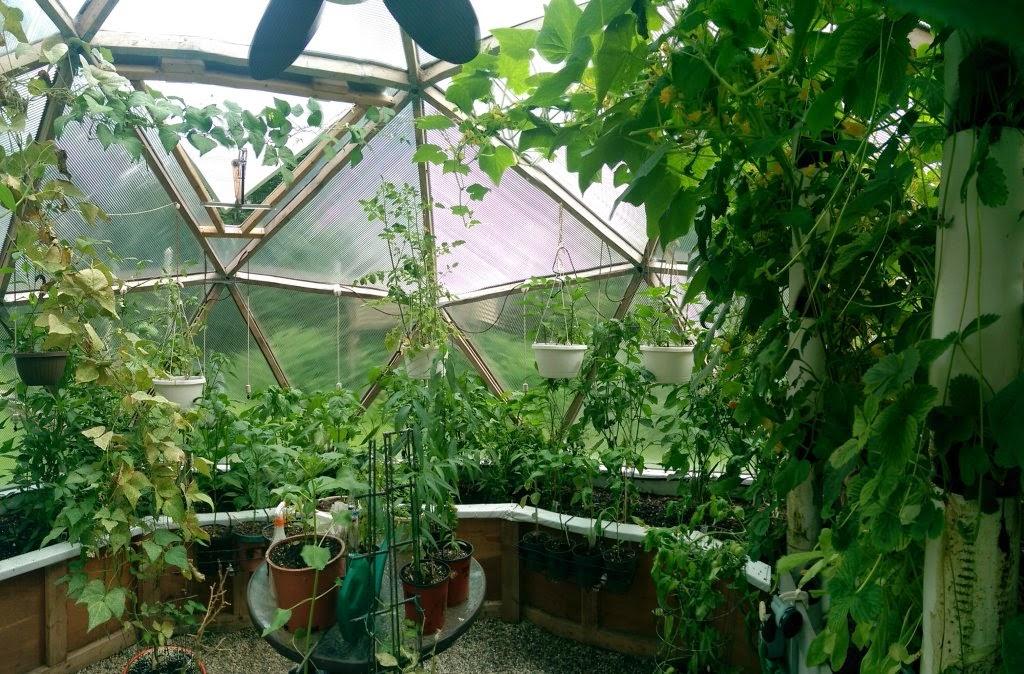 serre dome geodesique