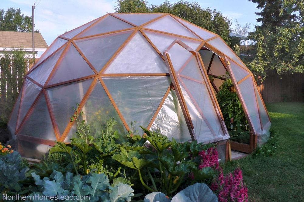 serre dome jardin