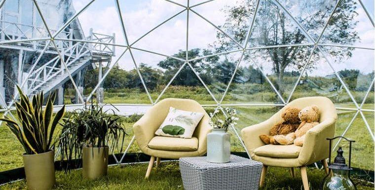 Igloo de Jardin Transparent : Avis sur le Kit Garden Igloo